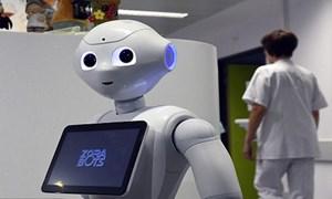 Robot tiếp đón bệnh nhân biết 20 thứ tiếng