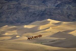 Sa mạc Gobi