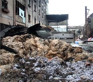 Sau vụ cháy ở Công ty may Kwong Lung Meko: Khẩn trương diệt ruồi