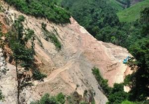 Tạm dừng thi công thủy điện 2.300 tỷ do phá rừng phòng hộ