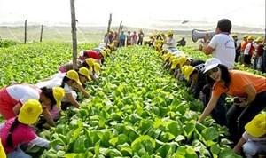 Tăng nguồn thu từ du lịch nhờ đặc sản nông nghiệp