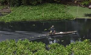 Xác định nguyên nhân làm nước sông Vàm Cỏ Đông bị ô nhiễm