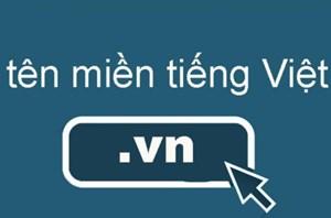 Tên miền '.vn' chuyển nhượng quyền sử dụng không qua đấu giá