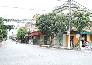 Thái Bình: Đưa nông thôn mới về đích