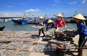 Tháng 6 hoàn thành bồi thường, hỗ trợ thiệt hại cho người dân 4 tỉnh miền Trung