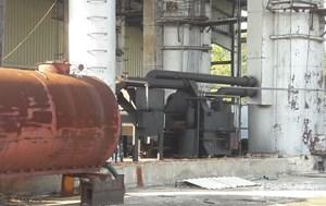 Thanh tra dự án nhà máy nghìn tỷ bỏ hoang tại Nghệ An