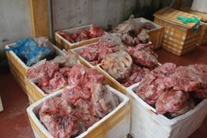 Thu hơn 2 tấn thịt động vật đã bốc mùi hôi thối