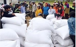 Thủ tướng Chính phủ chỉ đạo hỗ trợ gạo cho Phú Yên