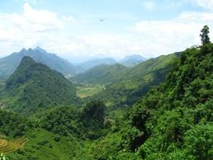 Thừa Thiên - Huế: Gần 100 tỷ đồng bảo vệ và phát triển rừng
