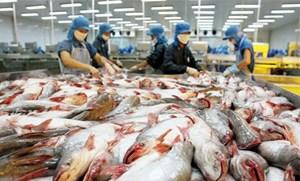 Thượng viện Mỹ hủy Chương trình giám sát cá da trơn