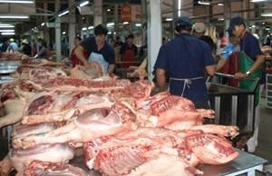 Tích cực phòng chống dịch tả lợn châu Phi: Đảm bảo thịt lợn cung ứng cho thị trường