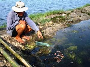 Tiếng kêu từ một dòng sông đang chết - Bài 1: Ô nhiễm cần sự giải cứu