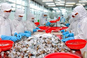 Tổng kết Dự án xây dựng trang trại nuôi cá tra