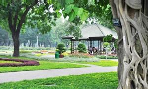 TP Hồ Chí Minh:  Cải tạo khu đất hoang thành công viên