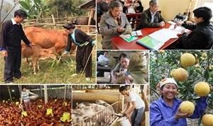 TP Hồ Chí Minh: Phối hợp thực hiện Chương trình giảm nghèo bền vững