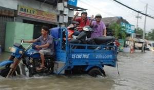 TP Hồ Chí Minh: Ứng dụng hệ thống thông tin địa lý trong thoát nước