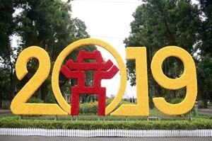 Trang trí đường phố Hà Nội: Đi tìm sự đồng thuận