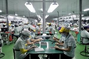 Tránh lệ thuộc vào doanh nghiệp FDI