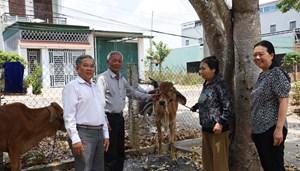 Trao tặng bò giống cho người nghèo khuyết tật