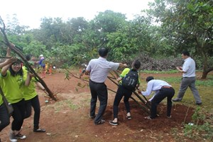 Trồng cây và làm sạch môi trường