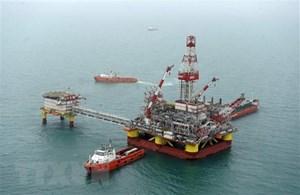 Các nước trong và ngoài OPEC sẽ gia hạn thỏa thuận giảm sản lượng