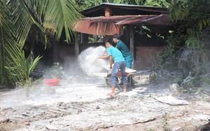 Tây Ninh: Xuất hiện ổ dịch tả lợn châu Phi đầu tiên