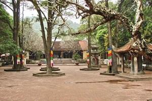 Tu bổ, tôn tạo di tích chùa Côn Sơn