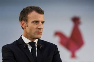 Tỷ lệ ủng hộ Tổng thống Pháp tăng cao trở lại