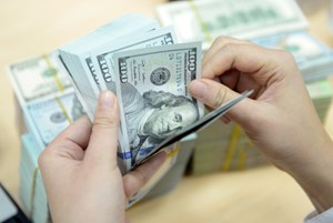 Vàng và USD tiếp tục hạ nhiệt