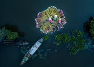 Việt Nam thắng lớn tại cuộc thi flycam quốc tế SkyPixel