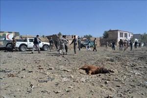 Taliban thừa nhận đánh bom xe gần Ban Điều hành an ninh quốc gia Afghanistan