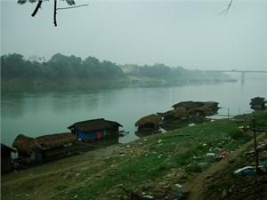 Vụ cá chết hàng loạt trên Sông Lô (Tuyên Quang): Tràn dầu từ một nhà máy