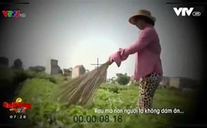 Vụ 'dùng chổi quét rau': VTV bị phạt 50 triệu đồng và phải cải chính