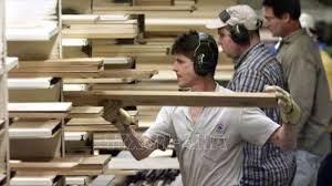 WTO ủng hộ Canada một phần về thuế nhập khẩu gỗ mềm