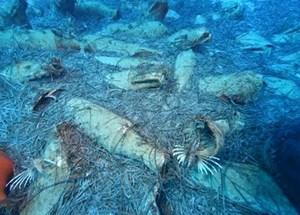 Cyprus lần đầu tiên tìm thấy một xác tàu đắm thời La Mã