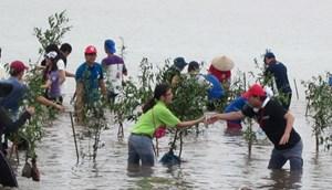 Xây dựng kế hoạch hành động ứng phó biến đổi khí hậu