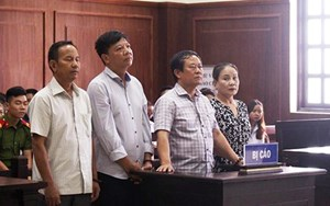 Tuyên án phúc thẩm vụ buôn lậu gỗ trắc lớn nhất miền Trung