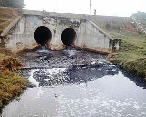 Xử lý triệt để các cơ sở gây ô nhiễm môi trường