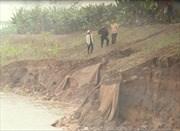 Xuất hiện vết nứt trên đê sông Hồng