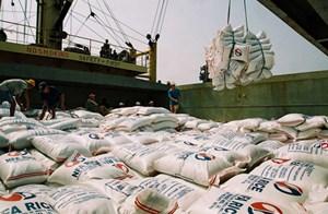 Muốn xuất khẩu, gạo Việt phải tránh tiếng 'hàng rẻ'