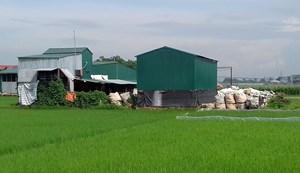 Yên Lạc, Vĩnh Phúc: Đất nông nghiệp thành nhà xưởng trái phép