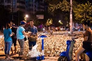 """100.000 con vịt """"xâm chiếm"""" đường phố"""