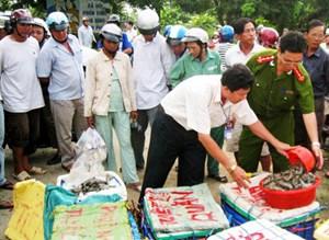 An toàn vệ sinh thực phẩm: Vi phạm vẫn gia tăng
