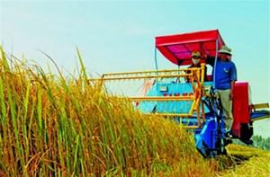 Cú hích đẩy nhanh tái cơ cấu nông nghiệp