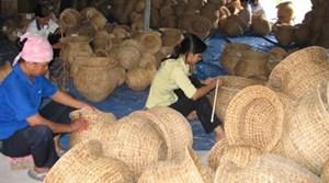 Hà Nội: Khảo sát kinh tế tập thể xong trước 24-7