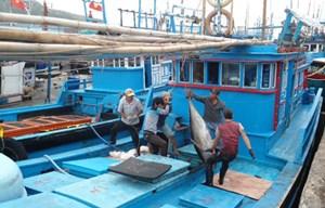 Hiện đại hóa đội tàu cá khai thác xa bờ