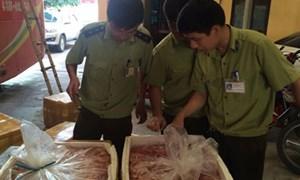 Ninh Bình: Thu giữ 14 thùng nội tạng hôi thối và nhiều động vật hoang dã