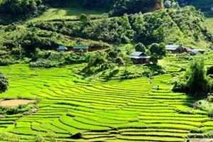 Tây Giang (Quảng Nam): 310 tỷ đồng làm đường vào trung tâm xã Axan