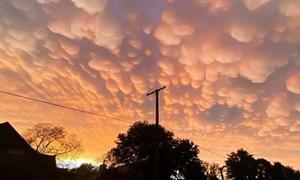 Kỳ lạ mây vảy rồng