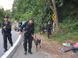 Đà Nẵng: Nỗ lực vây bắt tù nhân trốn trại tại Quảng Ngãi